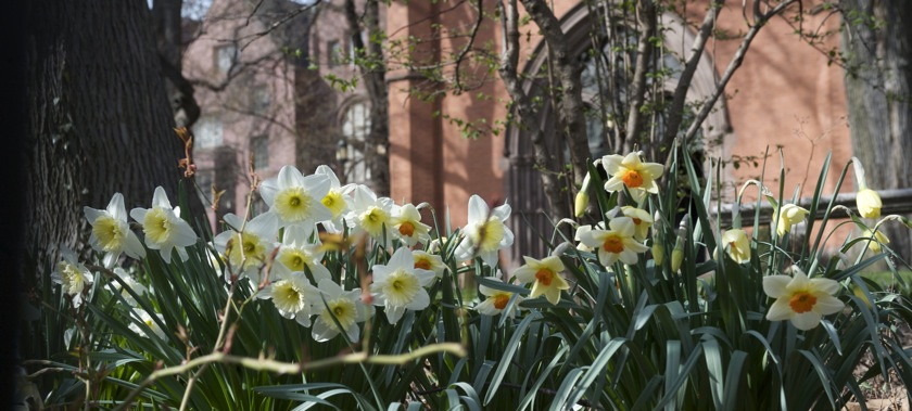 Spring Courses at General Theological Seminary