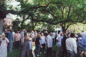 Garden Party Revels in Early Summer